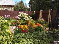 наш сад